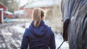 tyttö taluttaa hevosta