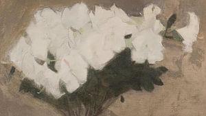 "Helene Schjerfbecks ""Azalea"" från 1904."