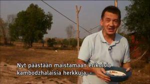 Uutisvideot: Heinäsirkkojen pyynti tuo rahaa Kambodžassa
