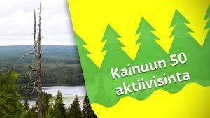Kainuun 50 aktiivisinta: Haastattelussa Niilo Härkönen