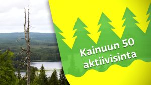 Kainuun 50 aktiivisinta: Haastattelussa Eeva Mäntymäki aiheena Kajaanin linnan neito