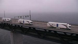 Uutisvideot: Robottirekkojen letka ajoi Ruotsista Hollantiin