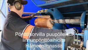 Yle Uutiset Häme: Pönttösorvi laulaa uusia koteja pikkulinnuille