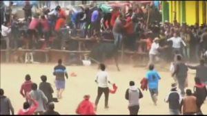 Uutisvideot: Loukkaantumisia härkätaistelufestivaalilla Perussa