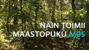 Uutisvideot: Löydätkö varusmiehiä tästä metsästä?