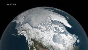 Uutisvideot: Arktinen merijää sulaa ennätystahtia