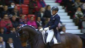 Urheilujuttuja: Ruoste puhdisti palkintopöydän Horse Show'ssa