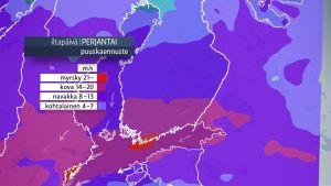 Säänurkka: Tuuli yltyy perjantaina etelässä jopa myrskyksi