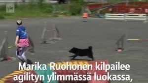 Yle Uutiset Lounais-Suomi: Marika Ruohonen on menettänyt puhekykynsä, mutta kilpailee agilityssa muiden joukossa