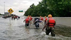 Uutisvideot: Kolme syytä Houstonin suurtulvaan