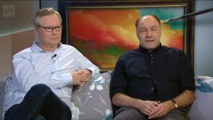 Ylen aamu-tv: Taidehuijausten hurja maailma