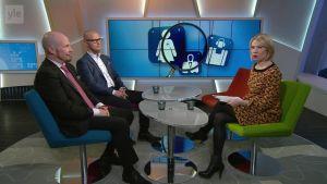 Ylen Aamu-tv: Headhunterien työnhakuvinkit