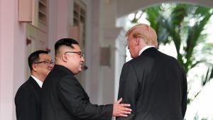Trump ja Kim kättelevät Capella-hotellissa Singaporessa