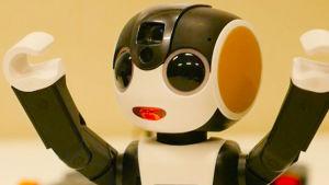 Korvaako minirobotti kännykän?