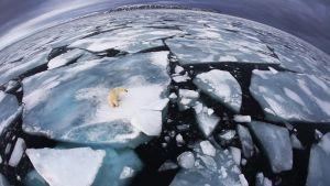 WMO kertoo maailman ilmastosta