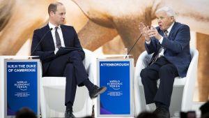 Prinssi William haastattelee David Attenborough'ta Davosissa –  kello 15.15