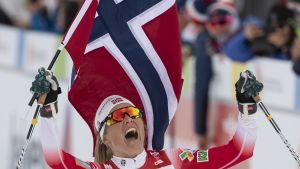 Norjalaisten ylivoima kyllästyttää jopa norjalaisia itseään – hiihdon suosio miljoonamarkkinoilla on romahtanut ja kisajärjestäjät ovat talousvaikeuksissa