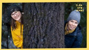 Metsät: Roosa istutti puun taimia sitomaan päästöjä – pitääkö meidän kaikkien ryhtyä istutustalkoisiin?