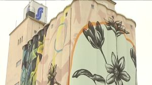 Italialainen Fabio Petani maalaa muraalia Salossa