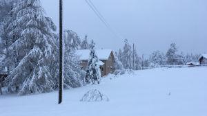 Talo lumisessa maisemassa.