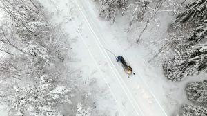 Huurrelumi on yksi sähkökatkosten aiheuttajista. Verkkoyhtiön partio puhdistaa lumet johtimista.