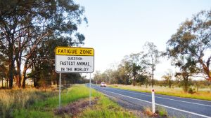 """Kuvassa liikennemerkki, jossa kysytään """"Mikä on maailman nopein eläin?"""""""