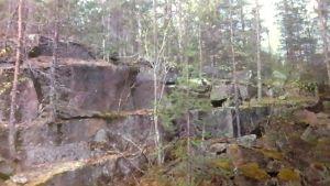 Kallioalue Pelkosenniemellä