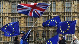 Brexitin vastustajat kampanjoivat parlamenttitalon edustalla Lontoossa.