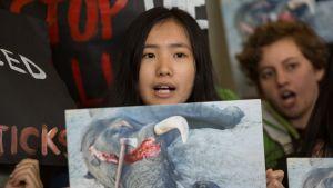 Ympäristöaktivistit osoittivat mieltään myyntikiellosta päättäneen lainsäädäntöneuvoston edustalla.