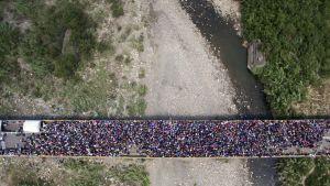 Tuhannet venezuelalaiset pyrkivät Kolumbiaan.
