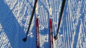 Sukset ja sauvat hiihtoladulla.