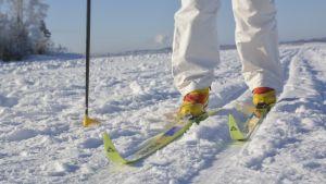 Näsijärvellä hiihdetään