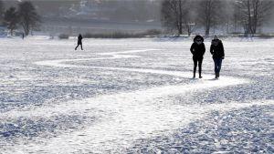 Ulkoilijoita jäällä Meilahdessa Helsingissä.