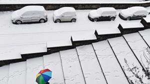 Kuvassa sateenkaarikuvioisella sateenvarjolla sonnustautunut henkilö kulkee lumisissa portaissa. Taustalla lumeen peittynyt autojono.