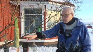 Seppo J. Ojalan pihapiirin lintulaudoilla riittää sekä syötävää että syöjiä.