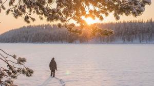 Talvinen maisema Hossassa.
