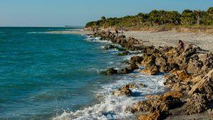 Floridan Venice Beachin rantaa.