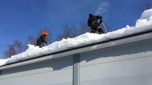 Lumenpudottajia katolla.