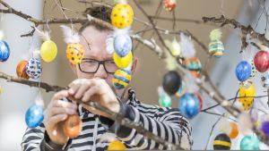 Taiteilija Urho Kähkönen koristelee pääsiäispuuta.