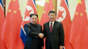 Pohjois-Korean uutistoimiston julkaisema kuva Kim Jong-unin Kiinan vierailulta Kiinan presidentin Xi Jinping kanssa.