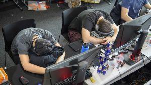 Kaksi pelaajaa nukkuu näppäimistön päällä