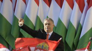 orban ja unkarin liput