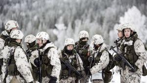 Maavoimien vaikuttamisharjoitus Rovajärven ampuma-alueella Rovaniemellä
