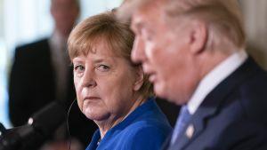 Angela Merkel  ja Donald Trump