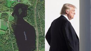 Kuva lammesta ja Donald Trumpista