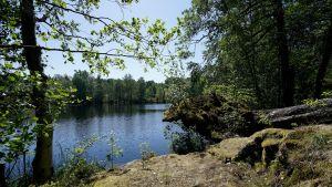 järvi Vallisaaressa