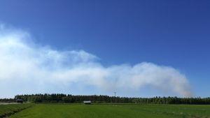 Turvetuotantoalueen palon savua Vetelissä.