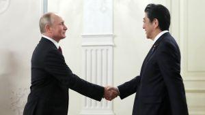 Vladimir Putin kättelee Shinzo Abea.
