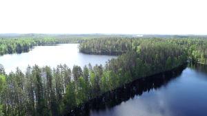 Petkeljärven kansallispuistoa