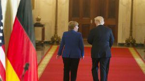 Saksan liittokansleri Angela Merkel ja Yhdysvaltojen presidentti Donald Trump tapaavat Washingtonissa.
